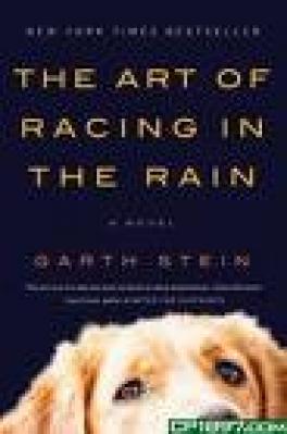 ART OF RACING IN RAIN, THE