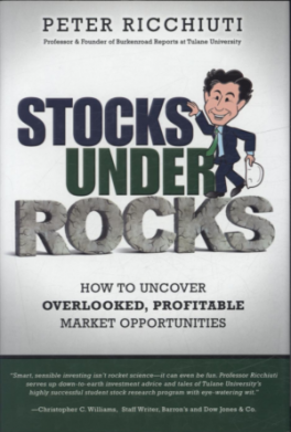 STOCK UNDER ROCKS: HOW TO UNCOVER OVERLOOKED, PROFITABLE MARKET OPPORTUNITIES, L/E