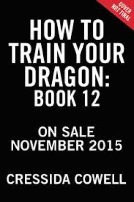 HOW TO TRAIN YOUR DRAGON #12