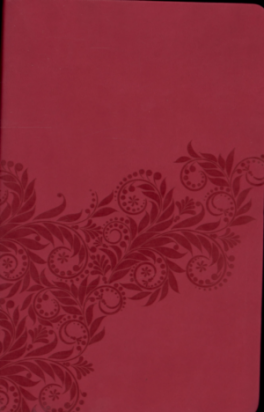 NKJV GIFT BIBLE, THE (PINK-LETHER SOFT)