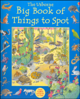 BIG BOOK OF THINGS TO SPOT, THE