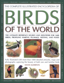 COMPLETE ILLUSTRATED ENCYCLOPEDIA BIRDS OF WORLD (B)