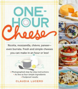 ONE-HOUR-CHEESE