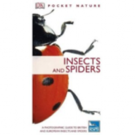 INSECTS AND SPIDERS (POCKET NATURE)
