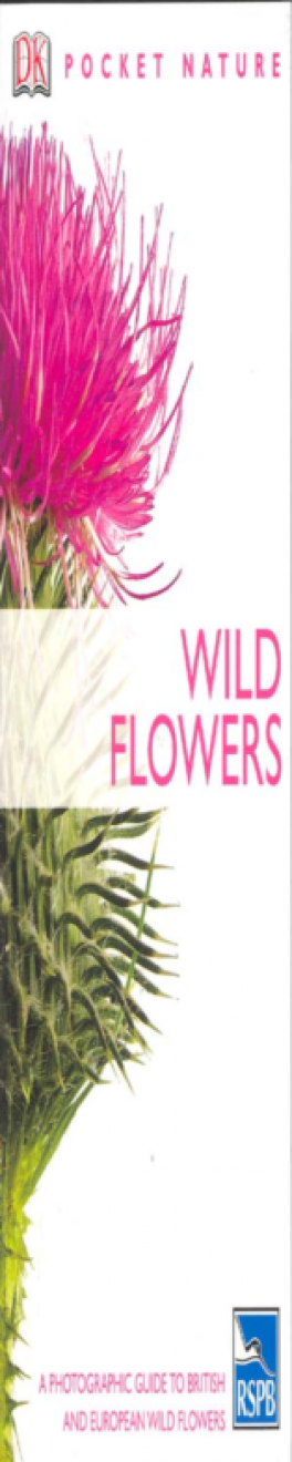 WILD FLOWERS (POCKET NATURE)