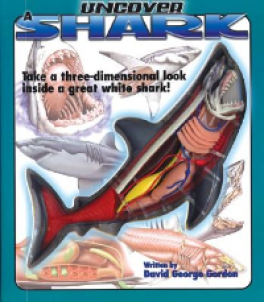 UNCOVER A SHARK