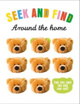 HIDE AND SEEK: AROUND THE HOME
