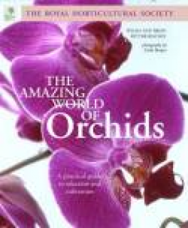 AMAZING WORLD OF ORCHIDS, A: A PRACTICAL LGUIDE TO CULTIVATION AND SELECTION