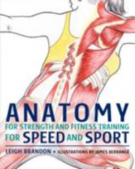 ANATOMY FOR STRENGHT AND FITNESS TRAINING FOR SPEED AND SPORT