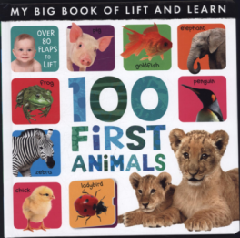 MY BIG BOOK OF LIFT AND LEARN: 100 FIRST ANIMALS