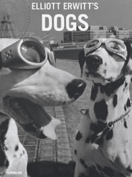ELLIOTT ERNITT'S DOGS
