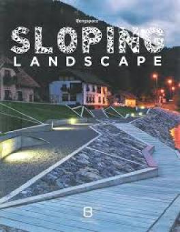 SLOPING LANDSCAPE