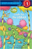 LOOK FOR THE LORAX (SIR 1)