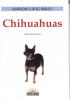 CHIHUAHUAS (DVB)
