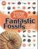 STICKER ACTIVITY FANTASTIC FOSSILS