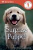 SURPRISE PUPPY! (DK READERS LEVEL 1)