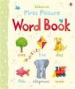 FIRST PICTURE: WORD BOOK