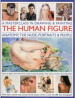 MASTERCLASS IN DRAWING & PAINTING THE HUMAN FIGURE, A