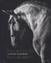 EQUINE BEAUTY: A STUDY OF HORSES