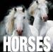 HORSES CUBEBOOK