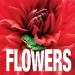 FLOWERS MINICUBEBOOK
